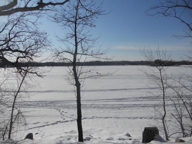 Lake 031313
